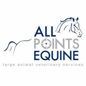 Equine-Sports-Massage-Therapy-Lehigh-Valley